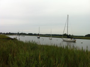 guilford marsh cattails sailboats river